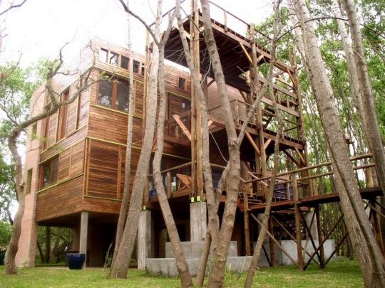 Дом-дерево (Casa del ?rbol) в дельте реки Параны от Elisa Gerson Arquitectos