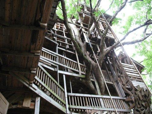 Minister's Treehouse 1