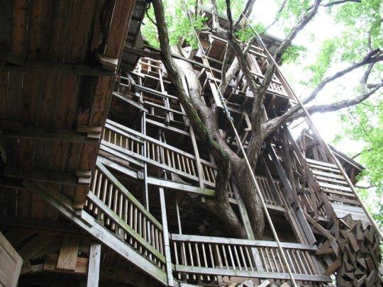 Дом на дереве в Теннесcи