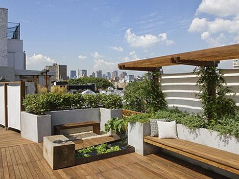 Городской оазис на крыше