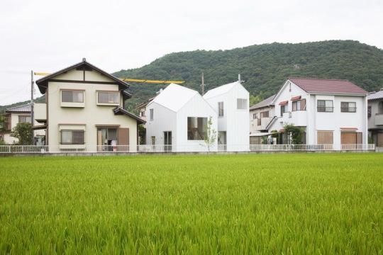Двойной дом у рисового поля